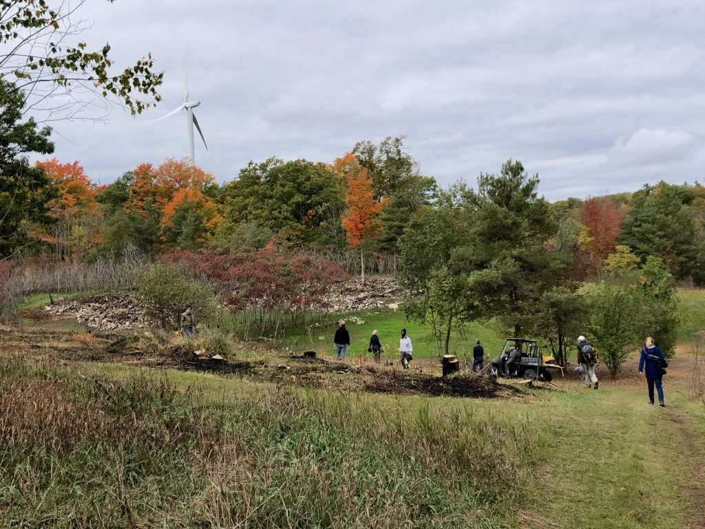 Tree planting in colourful fall under a windmill